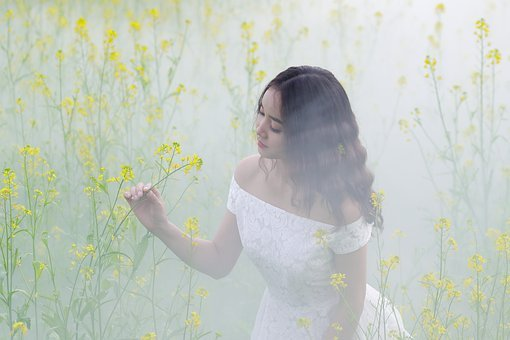 Portrait, Yellow, Flower Reform, Reform, Girl, Mist