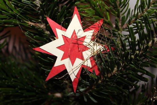 Asterisk, The Ceremony, Tree, Christmas, Winter