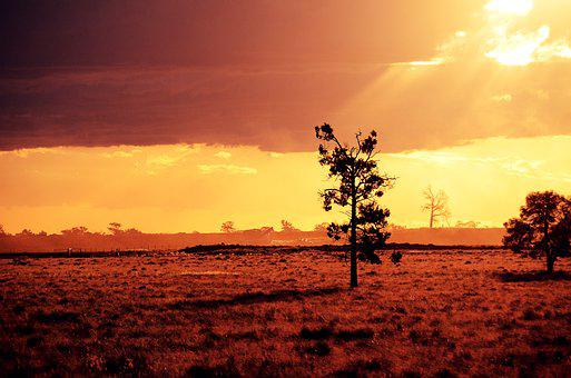 Nightfall, Xiao, Twilight, Natural, Sun, Wood