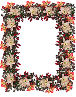 Frame, Border, Flowers, Berries