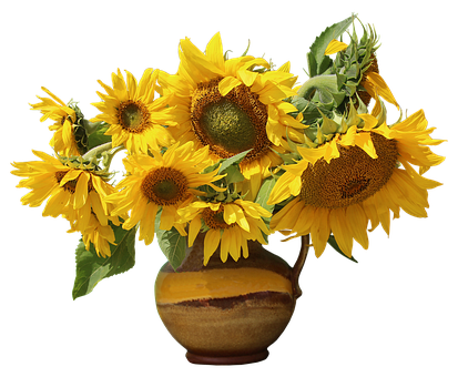 Nature, Plant, Leaf, Bright, Isolated, Still Life, Vase