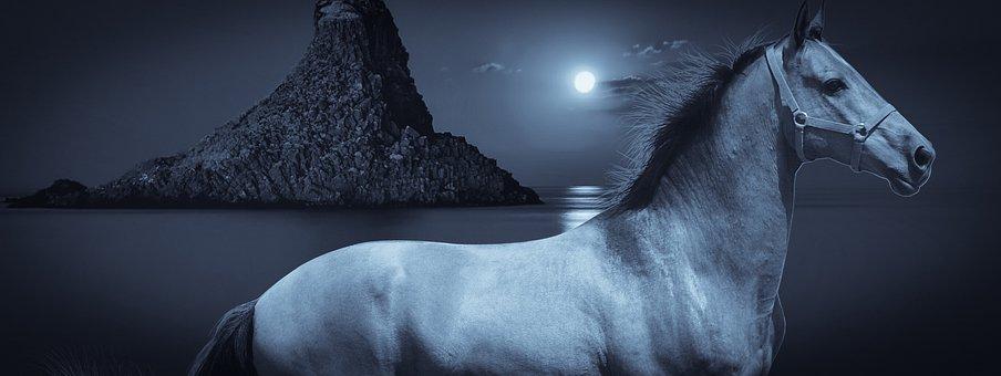 Design, Horse, Night, Island, Sea, Moon