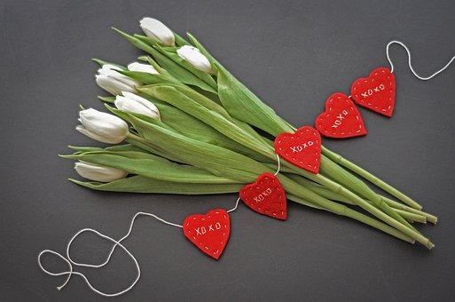 Nature, Flora, Flower, Tulips, Hearts, Freshness