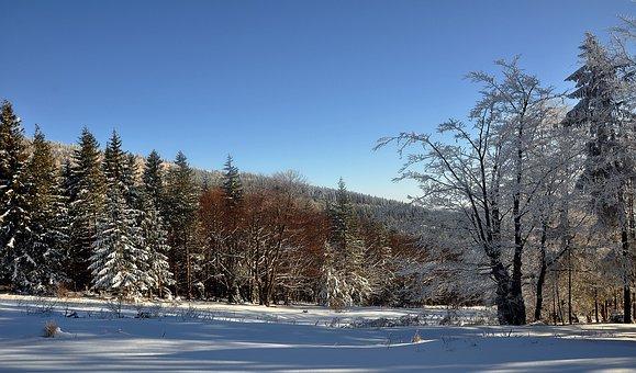 Snow, Winter, Nature, Tree, Landscape, Beskids, View