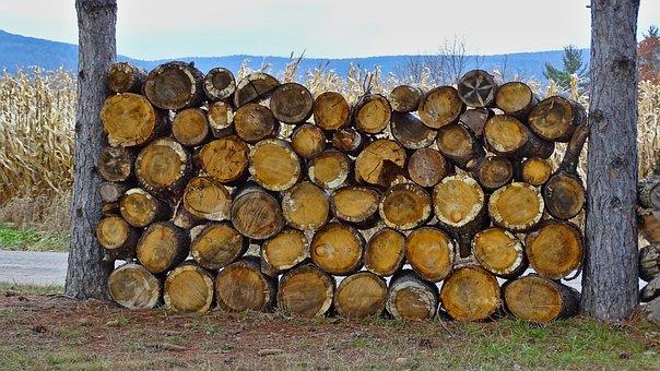 Wood, Firewood, Stack, Tree, Mountain, Winter, Pine