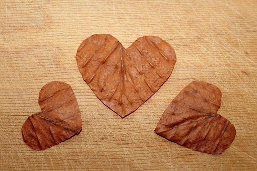 Heart, Valentine's Day, Symbols, Ornaments, Feeling