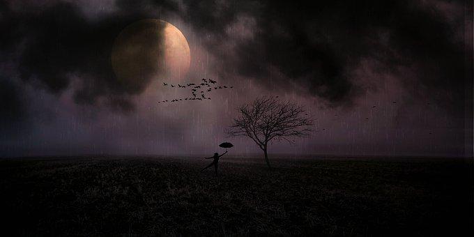 Moonlight, Woman, Rain, Umbrella, Nature, Darkness, Sky
