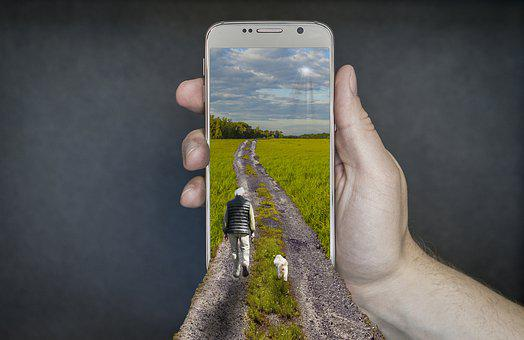 Smartphone, Walk, Man With Dog, Mobile Phone