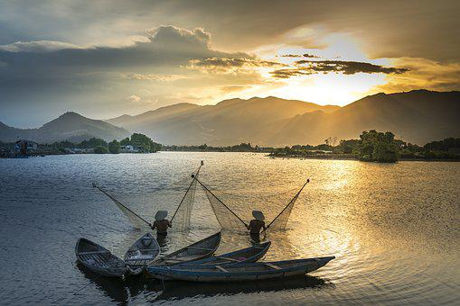 Green, The Boat, Environment, Fish, The Fishermen