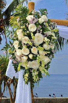 Beach, Wedding, Bali, Plant, Tropical, Exotic, Blossom