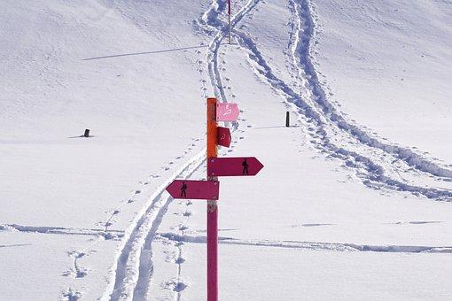 Snow, Winter, Cold, Ice, Nature, Season, Frost, Hill