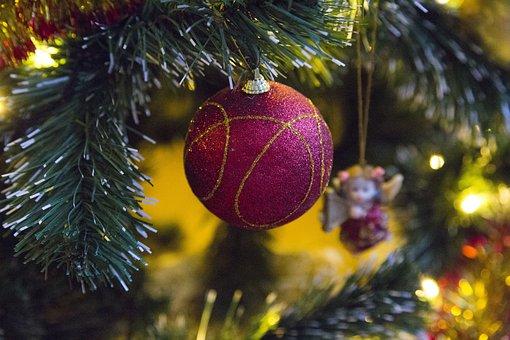 Winter, Christmas, Tree, Celebration, Decoration