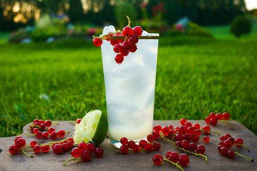 Fruit, Summer, Sweet, Garden, Berry, Drink, Fresh