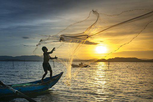 Fish, The Fishermen, Fishing, Outdoor, Life, Lifestyle