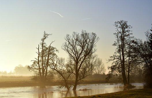 River, Water, Flood, Delight, Dawn, Twilight, Haze, Fog