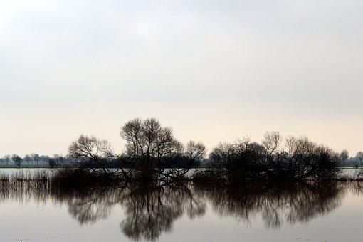 Nature, Waters, Reflection, Lake, Mirroring