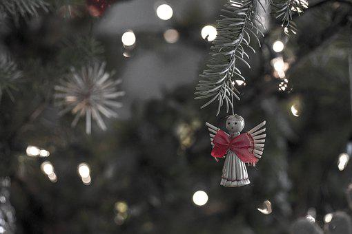 Winter, Christmas, Tree, Decoration, Nature, Angel