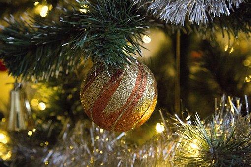 Winter, Christmas, Tree, Decoration, Season