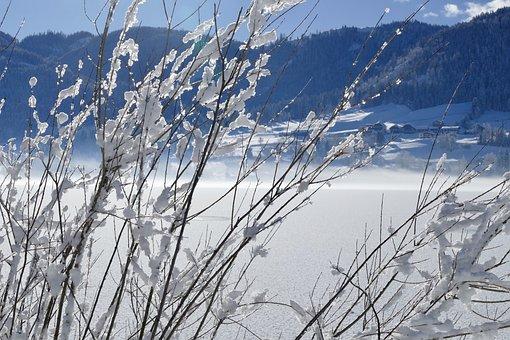 Snow, Winter, Nature, Frost, Cold, Frozen, Schönwetter