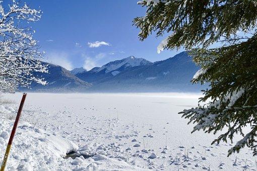 Snow, Winter, Cold, Nature, Tree, Landscape, Frozen