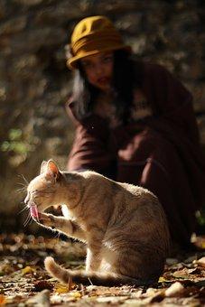Single, Outdoor, Nature, Folk, Mammals