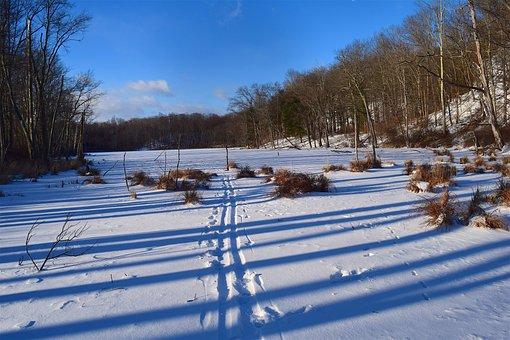 Snow, Landscape, Winter, White, Cold, Nature, Season