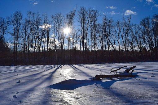 Snow, Landscape, Trees, Sun, Winter, White, Shadows
