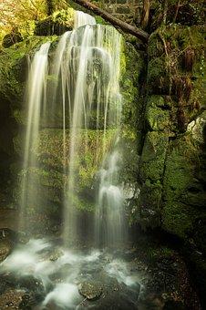 Waterfall, Waters, Nature, River, Blackbird Case