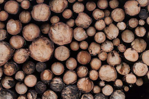 Wood, Background, Pile, Log, Many, Tree, Stack, Gap