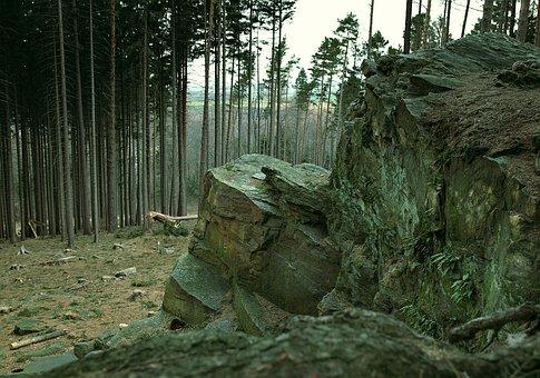 Rocks, Ridge, Stone, Mountains, Forest, Cut, Tree