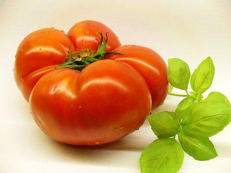 Food, Healthy, Vegetables, Bless You, Fresh, Tomato