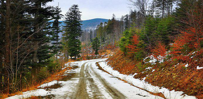 Way, Nature, The Mountains Landscape, Winter, Autumn