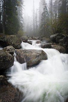 Water, Waterfall, River, Stream, Nature