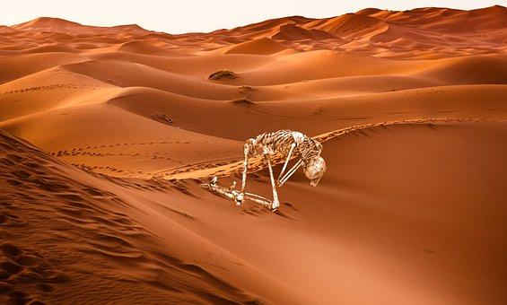 Desert, Sand, Skeleton, Screams, Scream, Silence