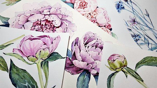 Art, Flowers, Painting, Watercolor, Peonies, Color