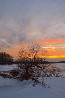 Sunset, Winter, Frozen, Landscape, Tree, Lake, Nature
