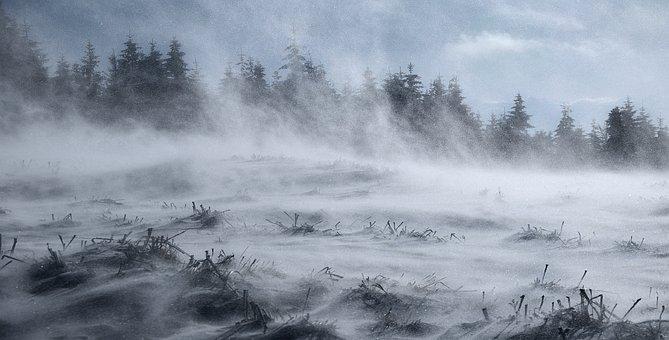 Nature, Winter, Snow, Frost, Wind, Zadymka, Landscape