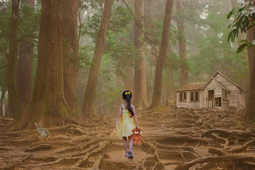 Wood, Human, Girl, Child, Teddy Bear, Trees, Forest