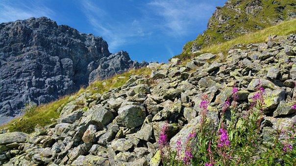 Mountains, Summer, Switzerland, Mountain Landscape