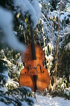 Double Bass, Snow, Music, Instrument, Wood, Nature