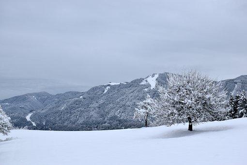 Snow, Winter, Cold, Mountain, Nature, Landscape, Snowy
