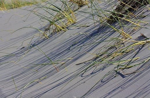 Dunes, Grass, Island, Sand, Beach, Nature, Summer
