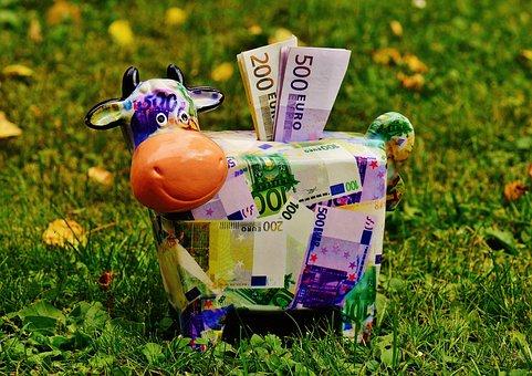 Piggy Bank, Money, Cow, Dollar Bill, 500 Euro, Piglet