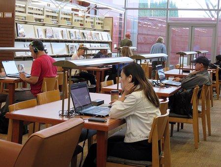 Library, Study, Homework, Education, Studying, School