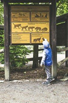 Nature Park, Wildlife Park, Nature, Animal, Wild Animal