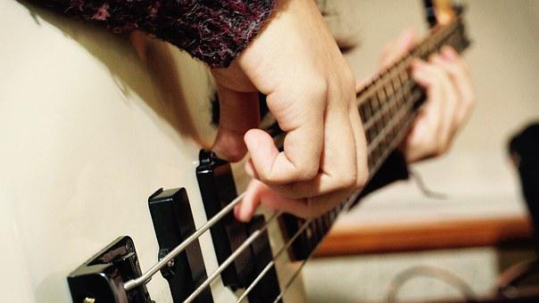 Bass, Musician, Music, Instrument, Live, Performance