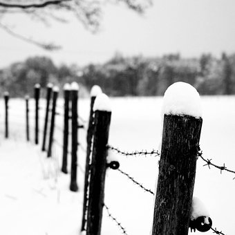 Winter, Fence, Sw, Snow, Cold, Wintry, Landscape