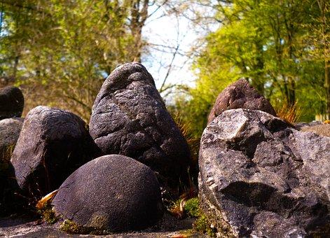 Nature, Tree, Stone, Boulders, Park, Augsburg, Rocks