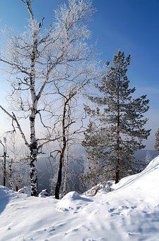 Snow, Winter, Cold, Frost, Ice, Russia, Russian Winter