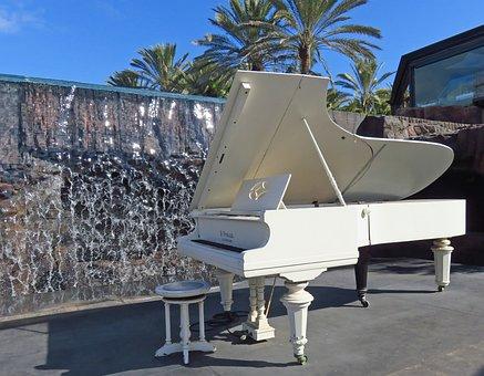 Luxury, Travel, Summer, Palm, Piano, Wing, Music